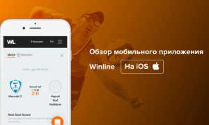 Обзор приложения букмекерской конторы Винлайн для Apple Iphone на Ios